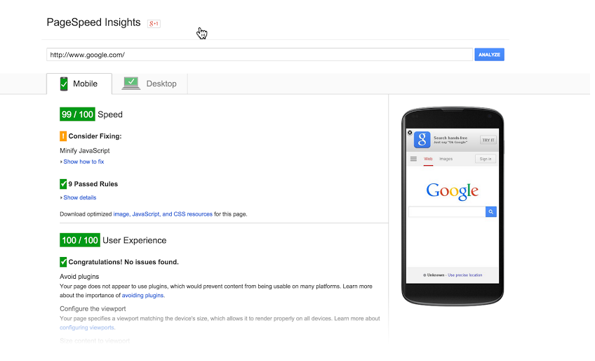 Google Page Speed Tool screenshot
